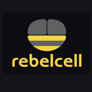Rebelcell Batteries